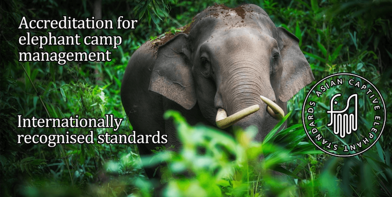 Asian Captive Elephant Standards (ACES) Certification